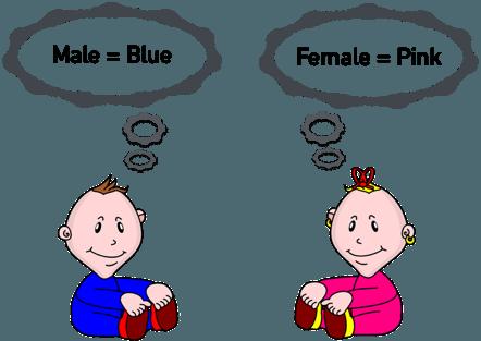 gender-schema-theory